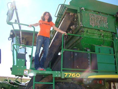 Image of 2014 Altus Cotton Harvest 2.JPG