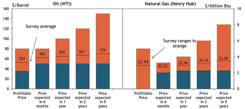 Firms were asked what oil and natural gas prices were needed for drilling to remain profitable on average across the fields in which they are active. The average oil price needed was $53 per barrel, with a range of $35 to $80. The average natural gas price needed was $2.94 per million Btu, with responses ranging from $0 to $5.00.