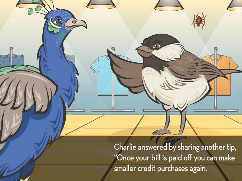 """Charlie answered by sharing another tip, """"Once your bill is paid off you can make smaller credit purchases again."""