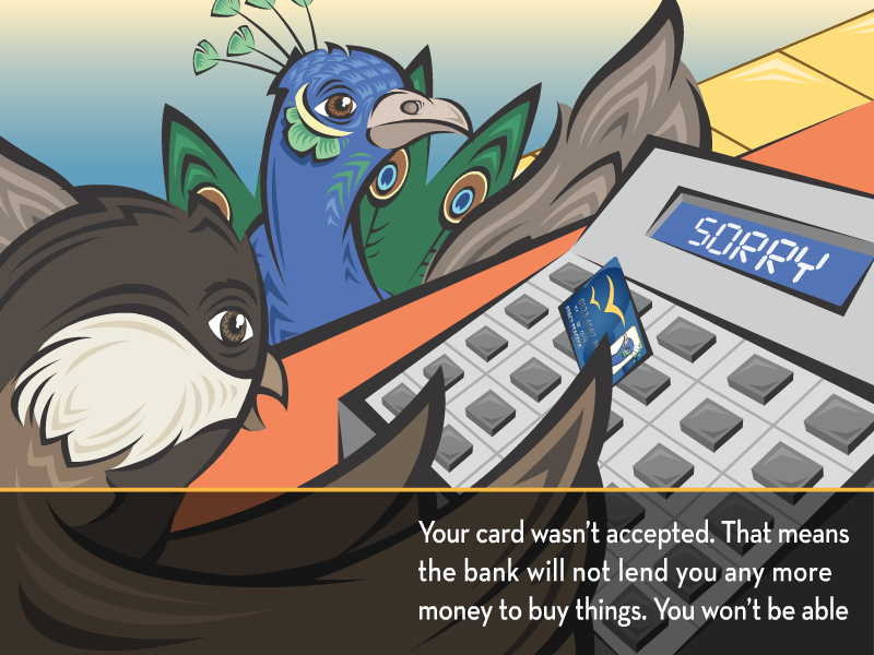 Your card wasn't accepted. That means the bank will not lend you any more money to buy things. You won't be able