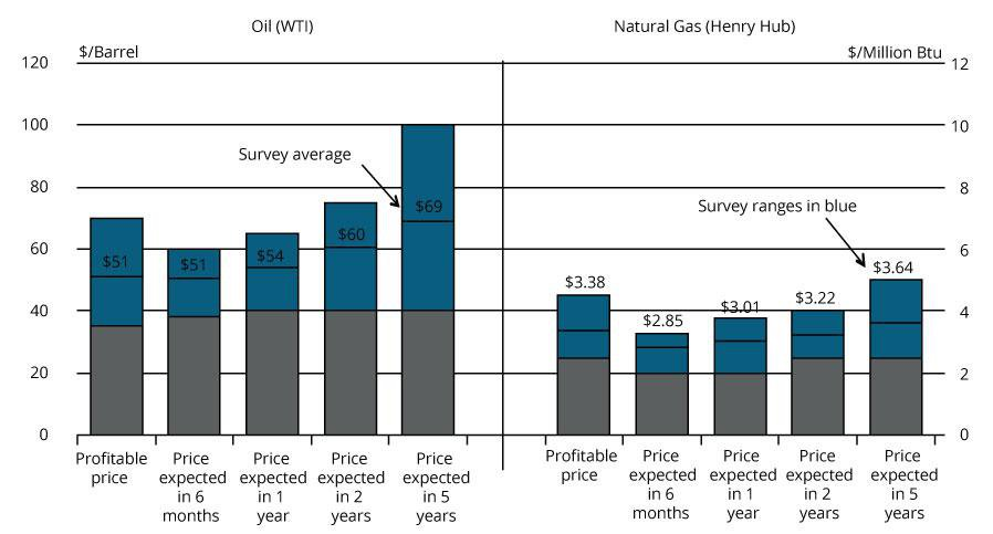 Chart 2: Special Question - What price is currently needed for drilling to be profitable for oil and natural gas, and what do you expect the WTI and Henry Hub prices to be in six months, one year, two years, and five years?